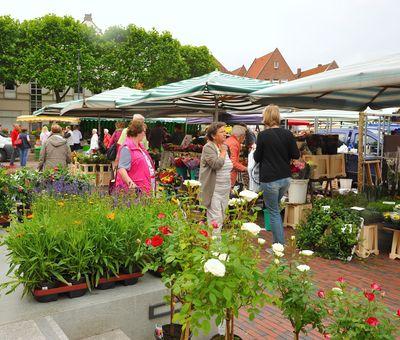 Wochenmarkt in Lingen - Blick auf Markttreiben