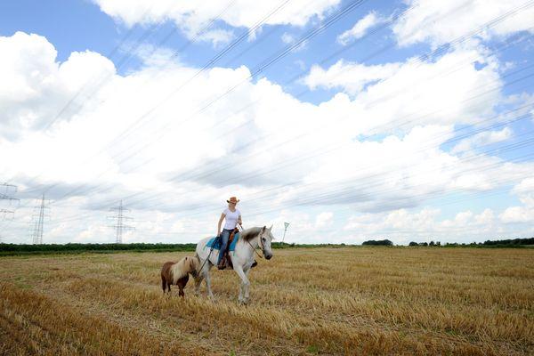 Frau auf Pferd mit Pony