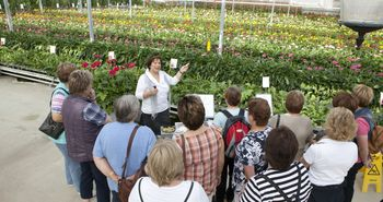 Erklärung von einer Gästeführerin im Schaugewächshaus vom Besucherzentrum Emsflower in Emsbüren