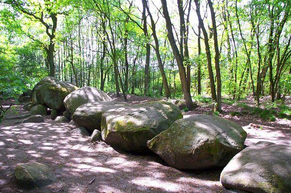 """Großsteingrab """"Hoogen Stainer"""" bei Werlte, das längste jungsteinzeitliche Kammergrab Nordeuropas"""
