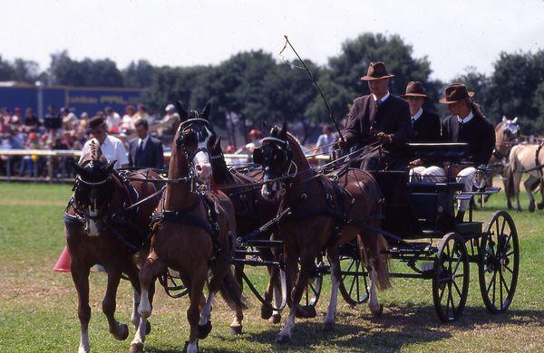 Lähdener Pferdetage - Vierspänner unterwegs im Parcours beim Turnier der Pferdesportgemeinschaft (PSG) Lähden