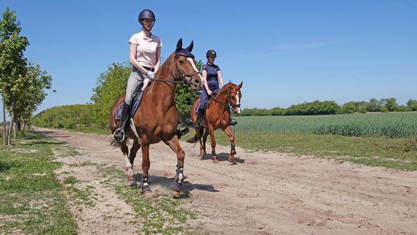 Zwei Reiterinnen unterwegs auf einem Feldweg